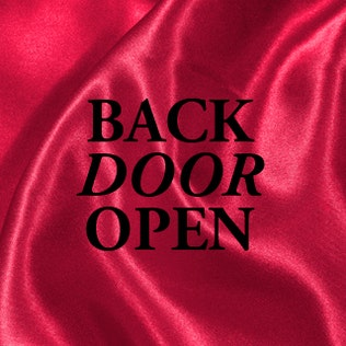 Back door open